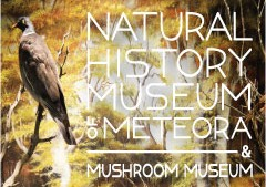 Meteora natural history museum and mushrooms